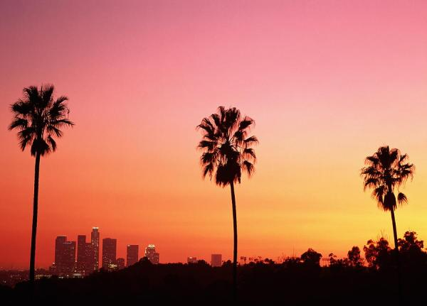 los-angeles-skyline-palm-trees-wallpaper-2